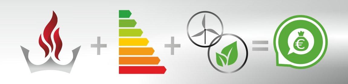 Staatliche Förderung für nachhaltige Heiztechnik - Weimarkamin